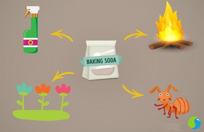 Công dụng tuyệt vời của Baking Soda